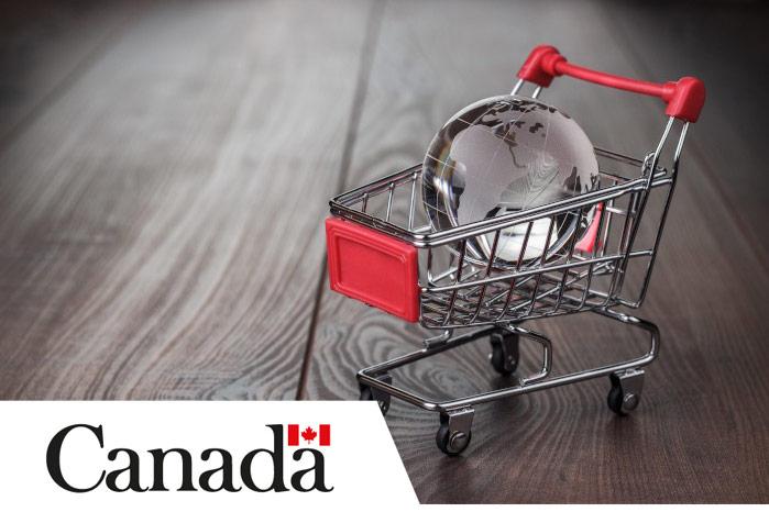 Glass globe in shopping cart